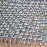 Stainless Wire Mesh Mine Sieving Mesh for Strainer/Vibrating