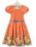 Fashion Flower Dress in Children Dress Clothing with Apprael Sqd-149