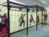 Fitness Equipment/Gym Equipment/Crossfit (MJ-15)