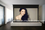 Motorized Tab-Tensioned Projection Screen / Projector Screen
