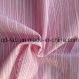 Yarn Dyed Stripe Shiting Fabric (QF13-0208)