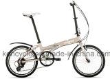 20 Inch Hi-Ten Material 7 Speed Folding Bik/Cheap Folding Bike