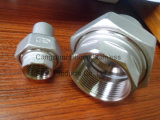 Stainless Steel Pipe Fitting Union Flat F/Bw