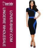 Woman Bodycon Office Slim Dress (L36119-3)