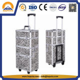 Aluminum Rolling Makeup Salon Cosmetic Trolley Case (HB-2053)