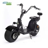 Ecorider 60V 1000W Lithium Battery Electric Scooter 2 Wheels
