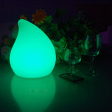 Christmas Battery Operated LED Light 16 Color Change Lamp