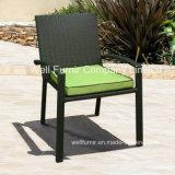 Wicker Arm Chair/Deep Seating/Rattan Furniture/Rattan Dining Chair/Wicker Bistro Chair
