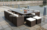 Rattan Dining Set/Rattan Outdoor Furniture/Outdoor Dining Table (DH-896)