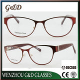 New Fashion Metal Glasses Eyewear Eyeglass Optical Frame Double Color Xd