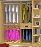 European Modern Design Modular Wardrobe for Ikea (Br-20-E)