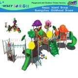 Outdoor Playground Equipment with Flowers (M11-00801)