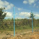 50*200mm Galvanized Wire Fence/Galvanized Wire Mesh Fence