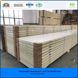 PU Foam Sandwich Panel for Cold Room, Cold Storage, Freezer, Cooling Room