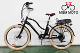 Europe Style Fashion Model Fat Tire Big Power Cheap Electric Bike