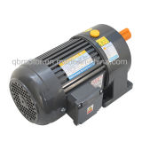 1/4HP Gear Reducer Horizontal Small AC Geared Gear Motor