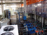 Complete Automatic Electrophoretic Spray Painting Line for Metal Products