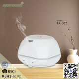 Aromacare Fragrance Gift Set with Electric Cold Mist Nozzle Aroma Diffuser