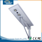 Easy Installation 70W Pure White LED Solar Street Lamp