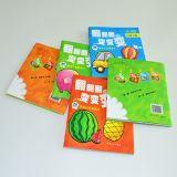 Baby Education Book Printing, Printing Booklet Brochure for Kids