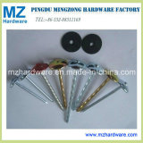 "Bwg9*2"" Umbrella Head Roofing Nail for Africa Market"