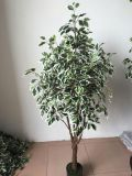 High Quality of Artificial Plants Ficus Tree Gu1468052164577