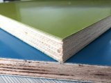 PP Plastic Faced Plywood for Construction