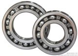 Low Price Deep Groove Ball Bearing 6213