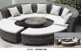 Outdoor Furniture/ Rattan Sofa (WF231-06)