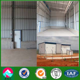Prefab Steel Warehouse Shed Construction (XGZ-SSB129)