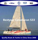 Bestyear Catamaran S33