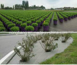 Ground Cover Weed Mat for Agriculture and Landscape