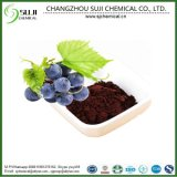 High Quality Proanthocyanidin Powder 95% /Natural Pure Grape Seed Extract