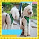 Best Sale Factory Price Pet Dog Collar (gc-d002)
