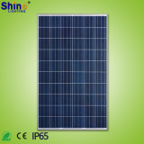Factory Directly-Selling 250W Mono or Poly Solar Panel