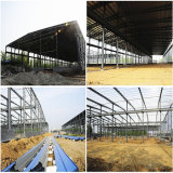 Light Gauge Steel Framing Workshop Building
