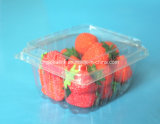 Pet Blister Packaging Clear Plastic Clamshell Food Containers for Blueberry Cherry Strawberry