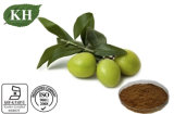 Natural Olive Fruit Extract with Maslinic Acid