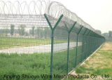Concertina Coils Razor Type Barbed Wire