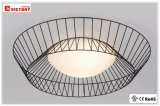 LED Modern Simple Indoor Decorative Ceiling Light for Living Room