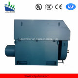 High Voltage Slip Ring 3-Phase Asynchronous AC Electric Induction Motor