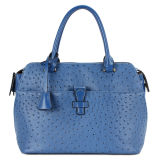 Designer Ostrich Leather Fashion Women Handbags (MBNO030077)