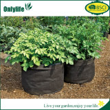 Onlylife Creative Oxford Plant Grow Bag Multi Colors Grow Pot