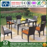 Dining Set for Outdoor with Aluminum / SGS (TG-348)