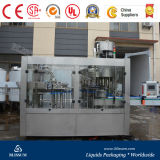 Small Complete Bottle Juice Filling Line