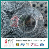 Low Pric Welded Wire Mesh/ Stainless Steel Welded Wire Mesh Rolls