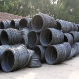 High Quality Hot Rolled Wire Rod with Different Sizes