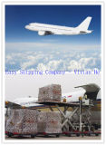 Consolidate Shipping Service for Battery/Motor/Powder Dangerous Cargo