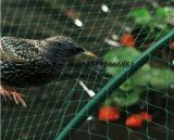 100% HDPE Agricultural Anti Bird Net