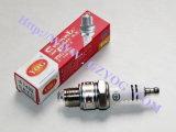 Motorcycle Parts Spark Plug Bujia (E6TC)